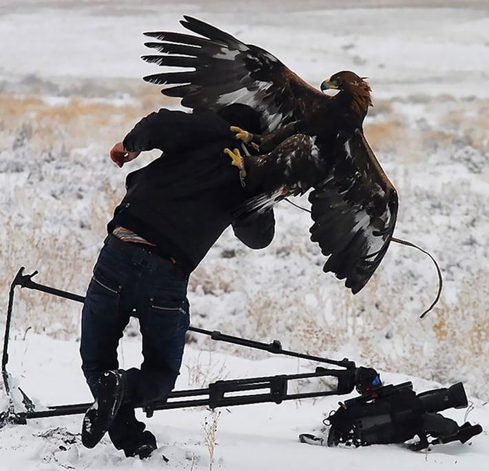 Фотограф отбивается от орла