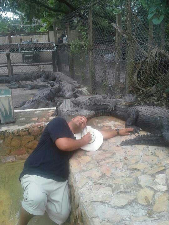 парень спит среди крокодилов