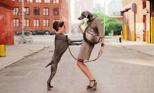 девушка с собакой на поводке