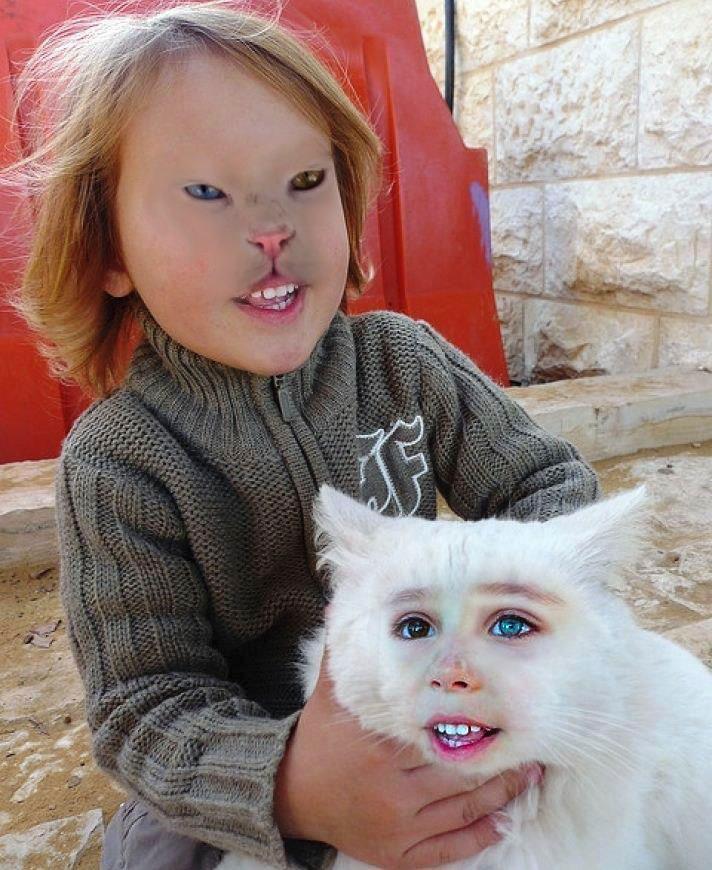 девочка с белым котом