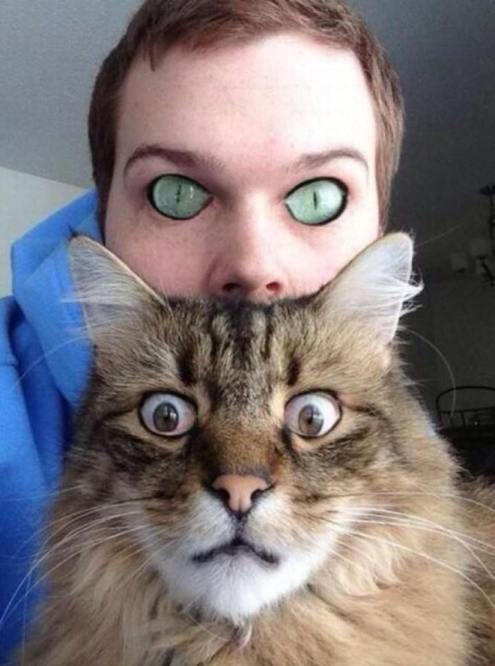 парень и полосатый кот