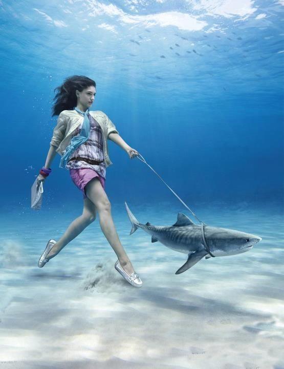 девушка с акулой на поводке