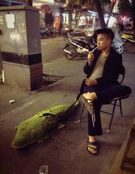 мужчина с игрушечным крокодилом