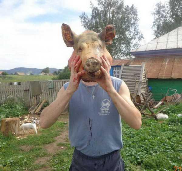 парень с головой свиньи