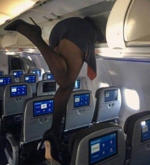 стюардесса ноги