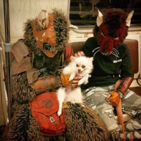 пара в костюмах животных с собакой в метро