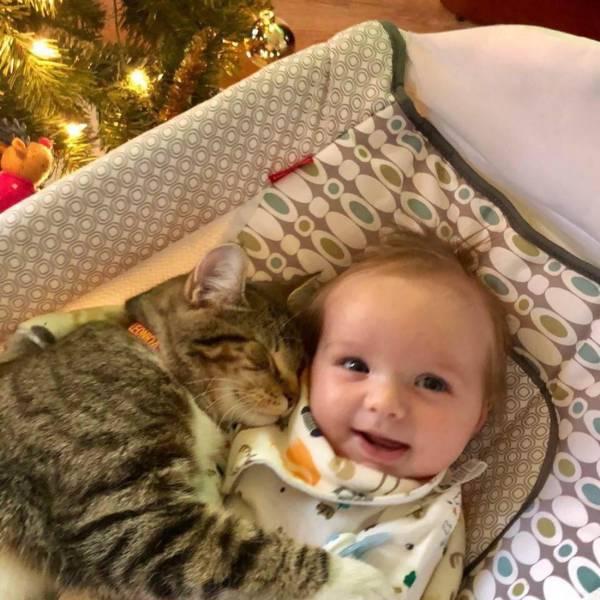 девочка и её кот