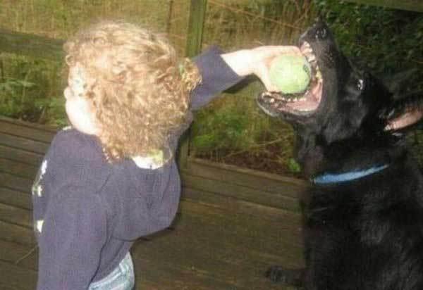 ребенок с мячом и собака