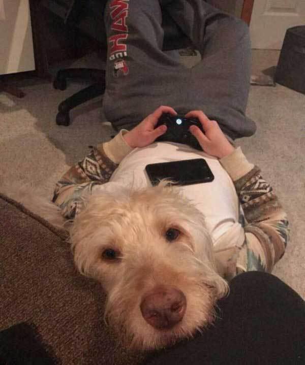 парень и собака на диване