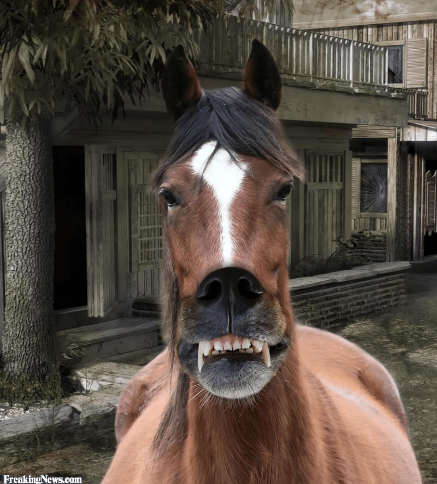 лошадь со ртом собаки