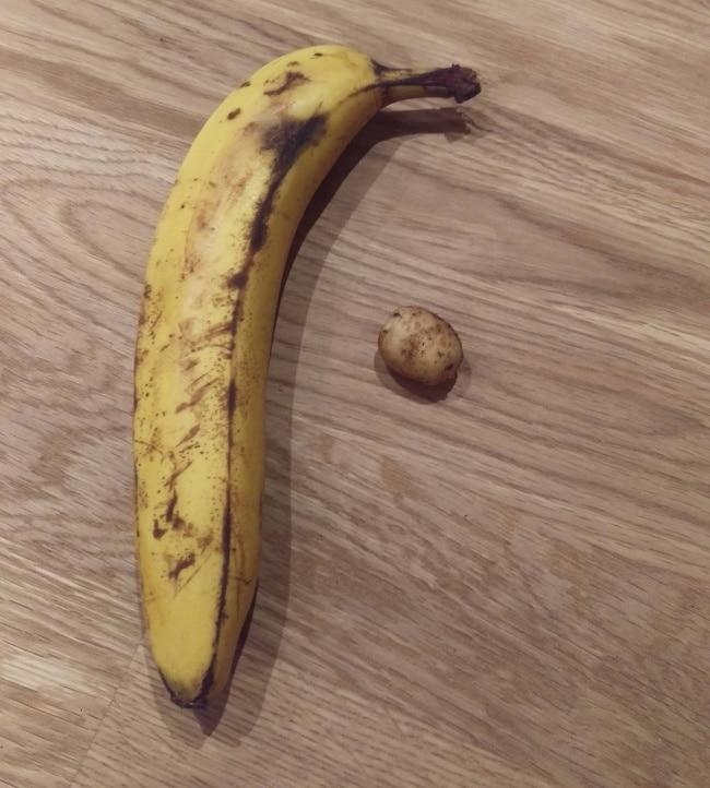 маленькая картошка