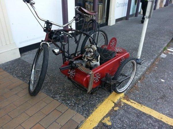 велосипед с коляской для собаки