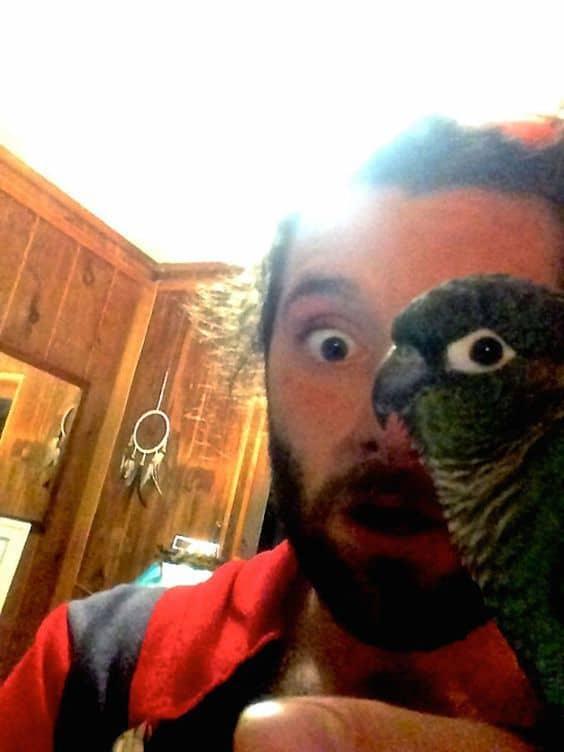 мужчина и попугай