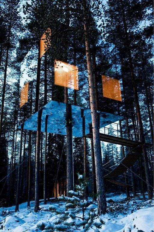 зеркальный дом на дереве