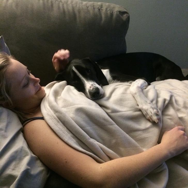 собака спит на груди у девушки