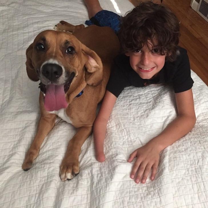 мальчик лежит рядом с собакой