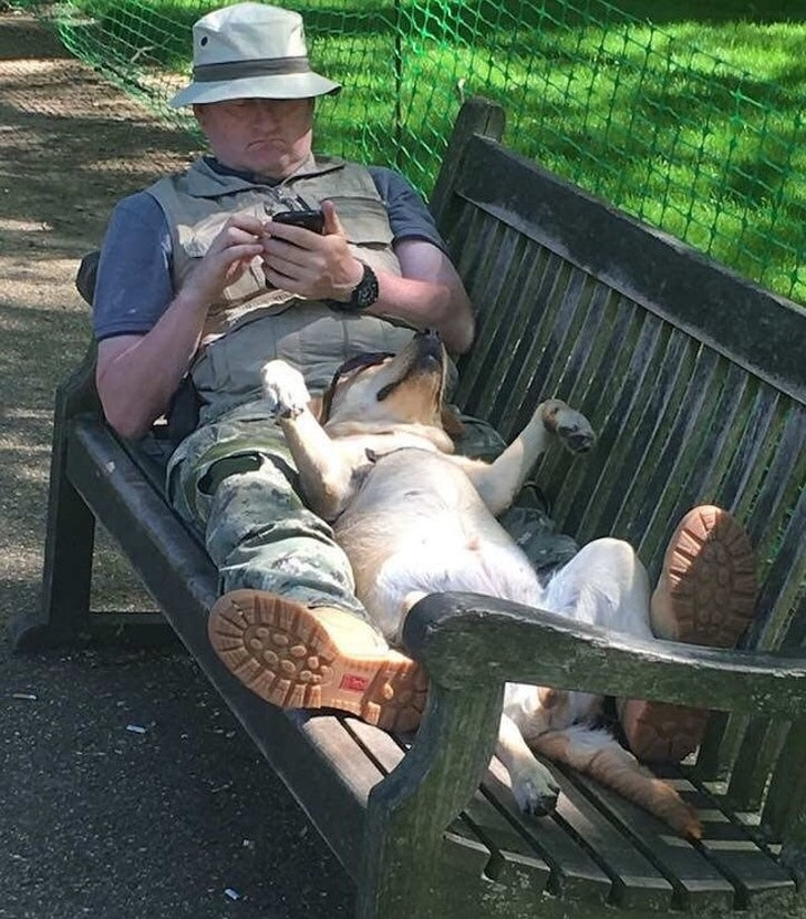 собака с хозяином на лавке в парке