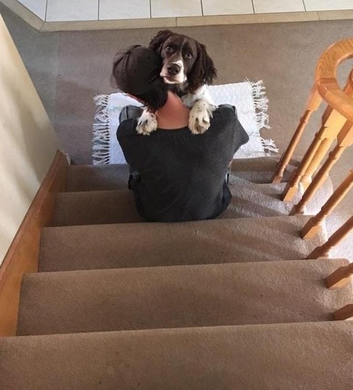 парень сидит на лестнице в обнимку с собакой