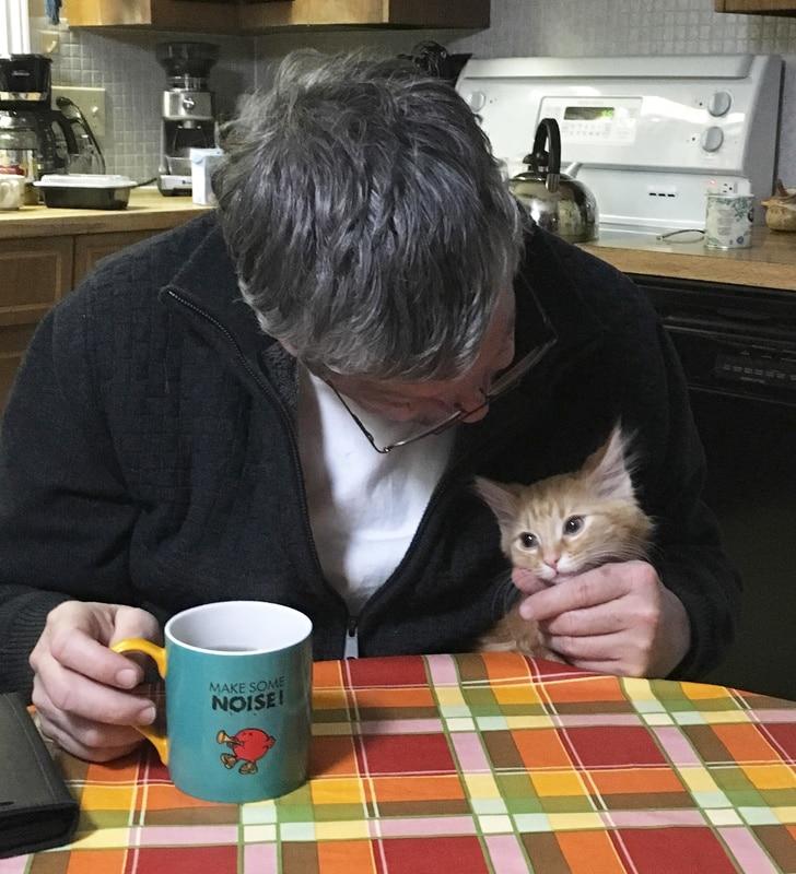 мужчина с рыжим котом за столом