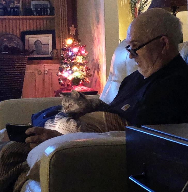 мужчина в очках с котом на коленях