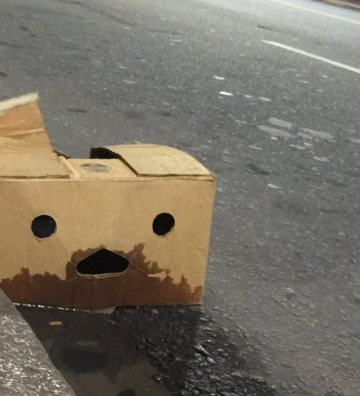 мокрая коробка
