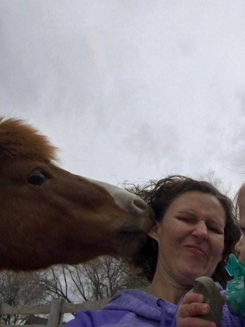 конь укусил за ухо женщину