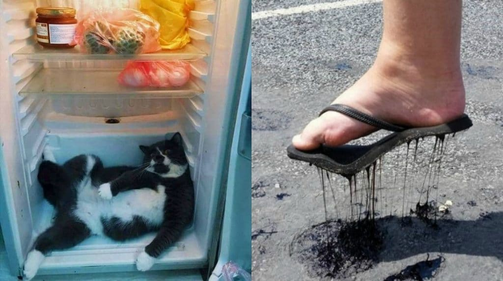 прикольные картинки тему жара чехлы