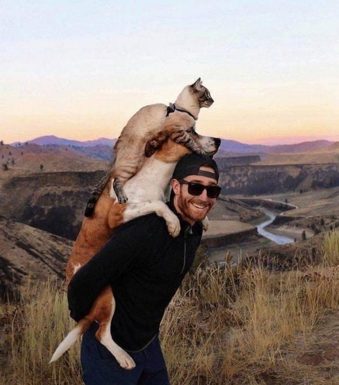 мужчина с собакой и котом на плечах