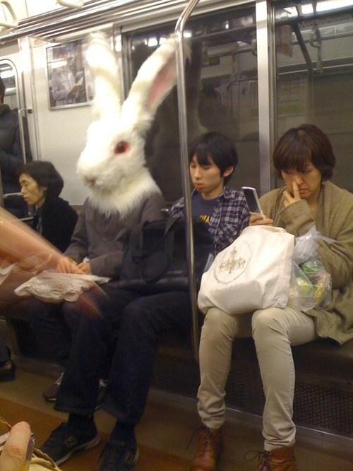человек с кроличьей головой в метро