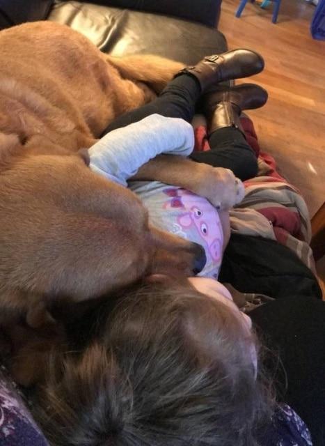 пес лежит с девочкой