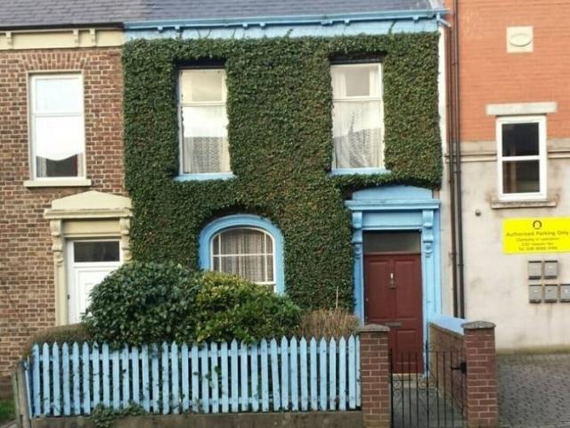 кирпичный дом весь в растении
