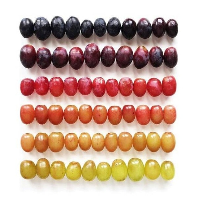 виноград разного оттенка