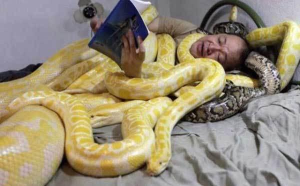 мужчина в змеях