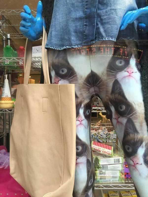 лосины с принтом кота