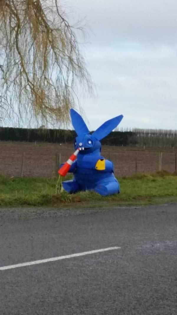 синий заяц на дороге