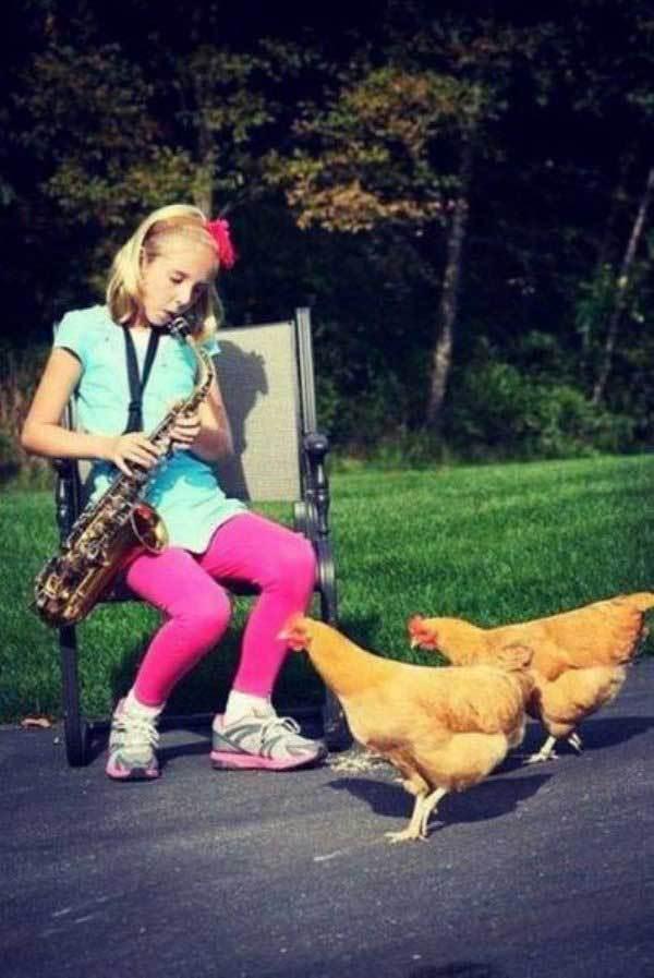 девочка с саксофоном и куры