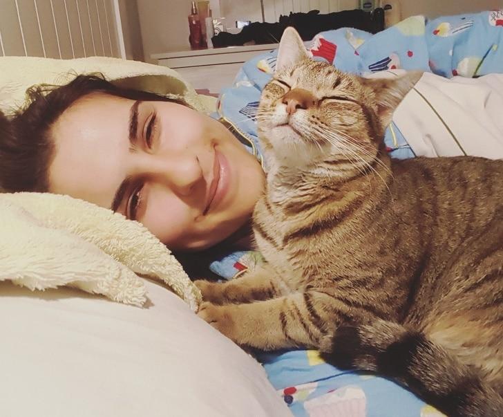 девушка и полосатый кот