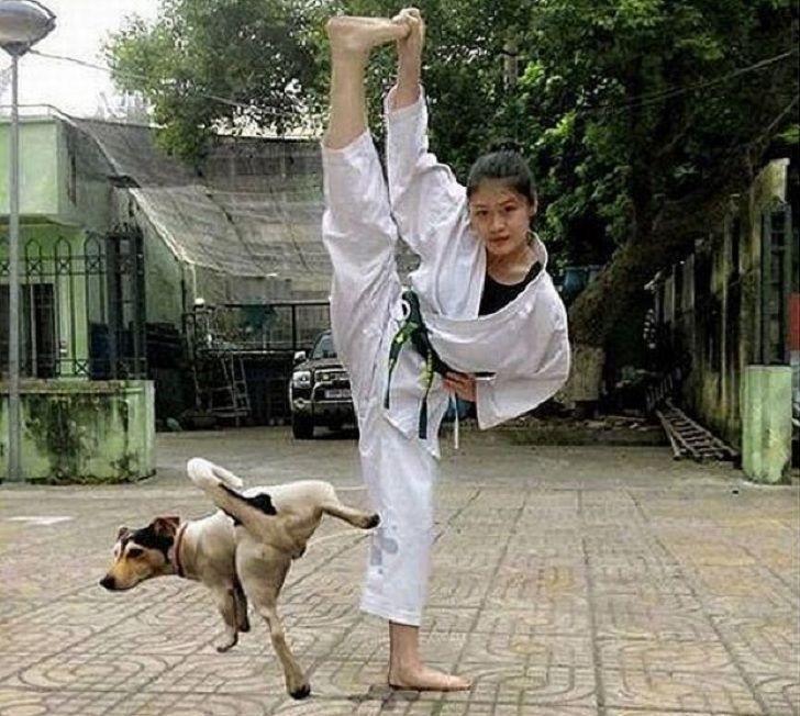 собака метит ногу девушки в кимоно