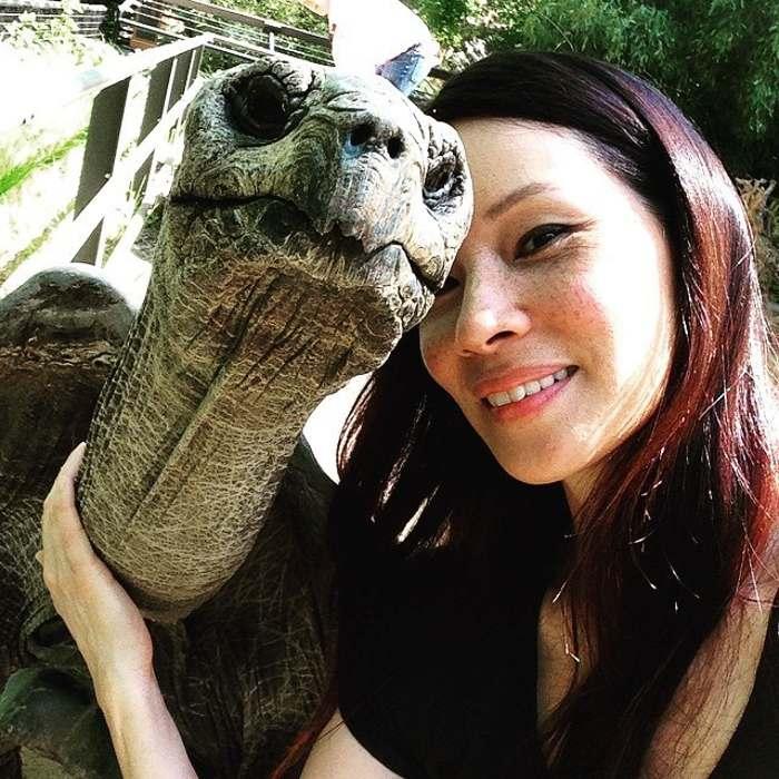 люси лью с черепахой