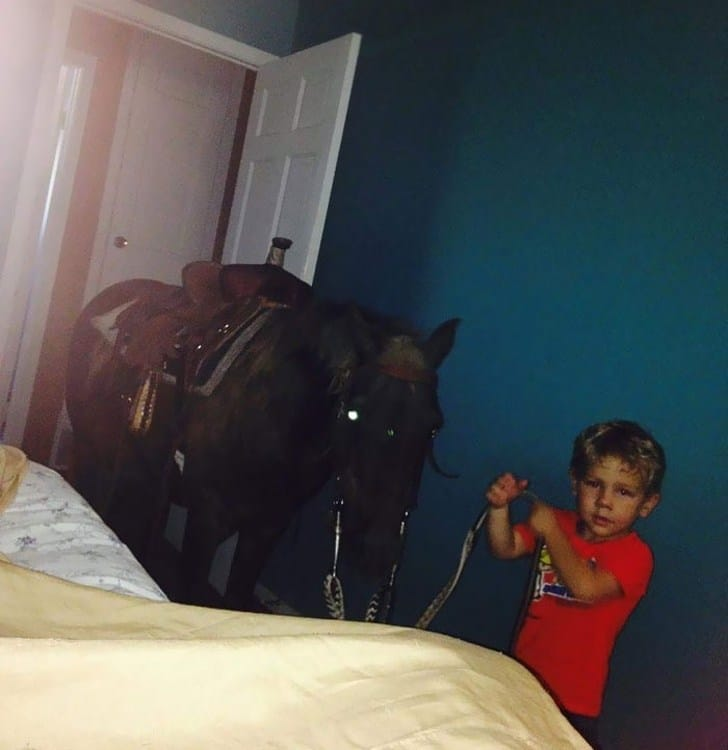 мальчик и конь