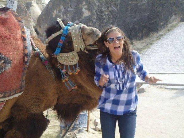 верблюд укусил девушку
