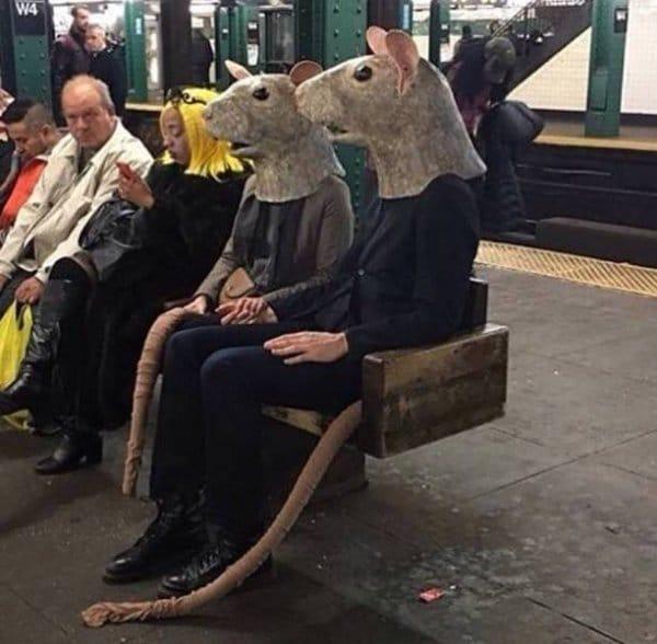 люди в костюмах крыс