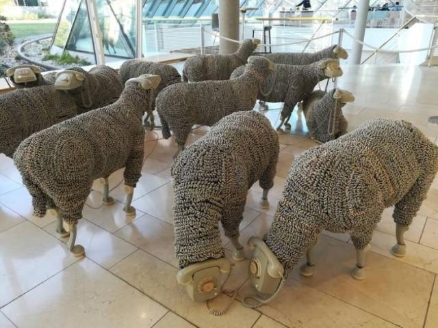овцы с телефоном вместо головы