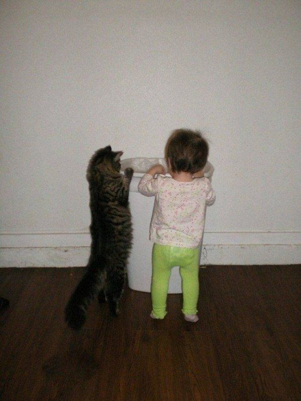 кот и девочка возле ведра