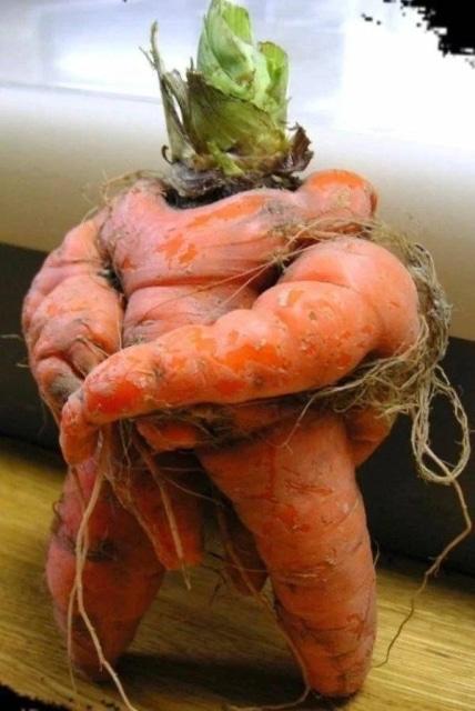 морковь необычной формы