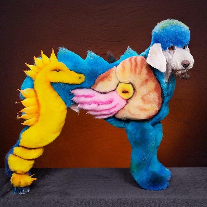 собака с морскими существами