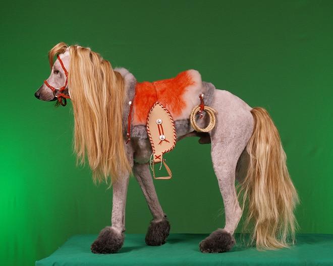 пес в образе коня
