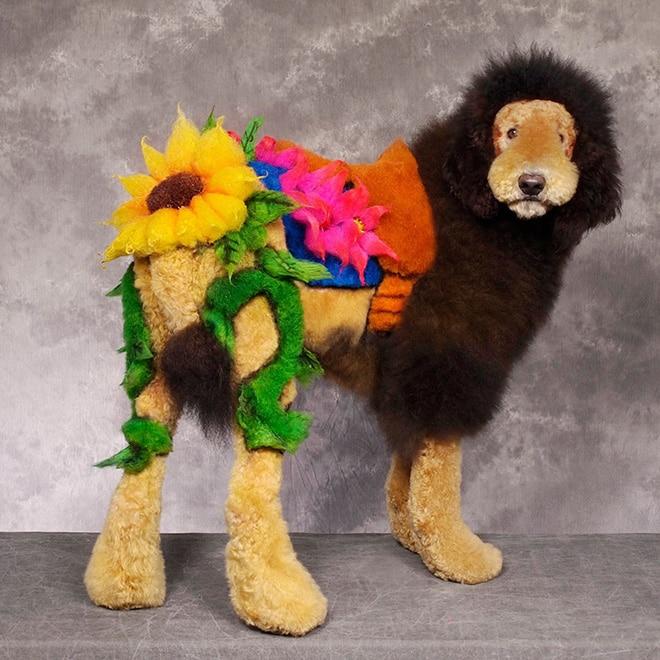 пес с цветами из шерсти