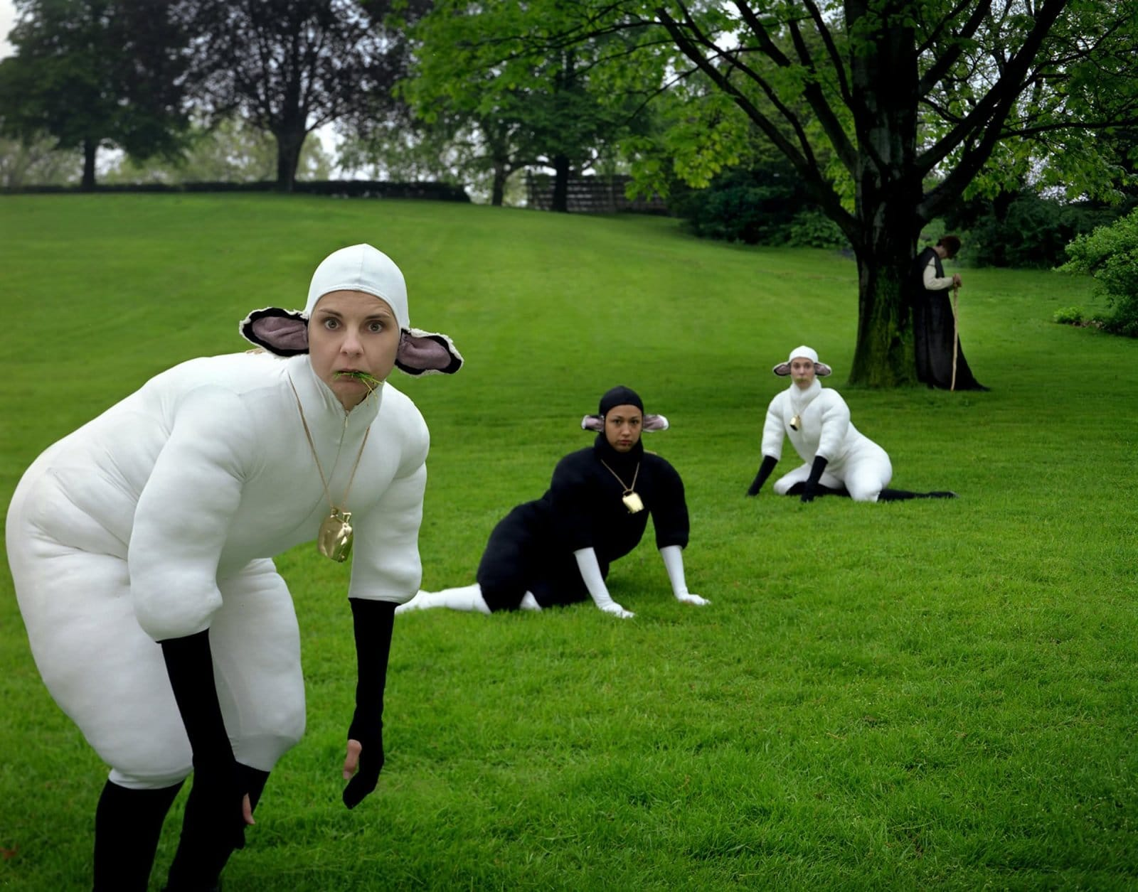 женщины в костюме овец на лугу
