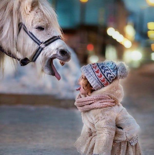 девочка показывает язык пони